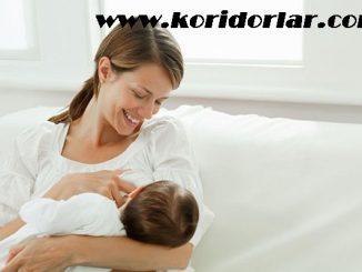 anne sütünü arttıran besinler, anne sütüne destek besinler, anne sütünü destekleyen besinler