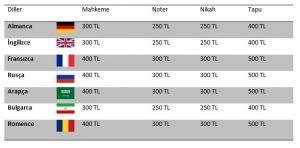 tercüme fiyatları nasıl, tercüme fiyatları nasıl belirlenir, tercüme fiyatlarını etkileyen etkenler