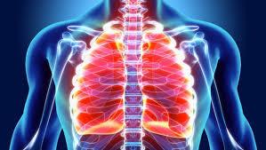 kan temizliği, akciğerlerin kanı temizlemesi